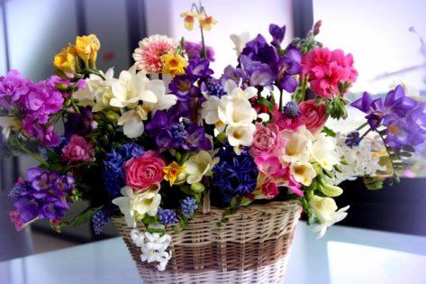 Какие цветы обязательно должны быть в доме по народным приметам