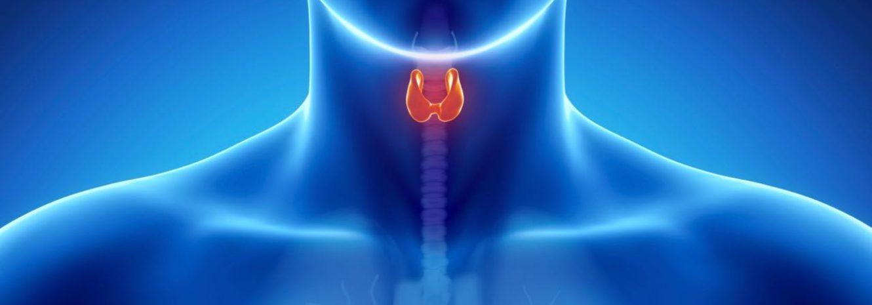 Гиперплазия щитовидной железы: что это такое