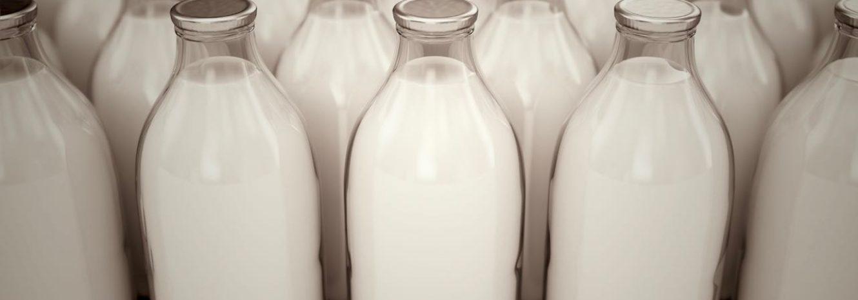 Что такое нормализованное молоко и как его делают