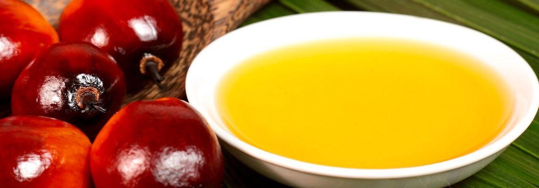 Пальмовое масло: что это такое и чем оно вредно