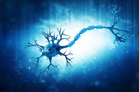 Рассеянный склероз: что это такое и сколько с ним живут