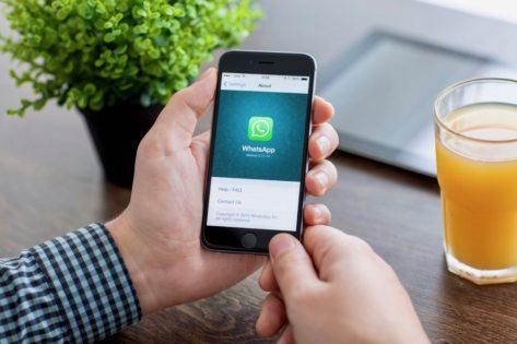 Что такое WhatsApp и как им пользоваться на телефоне